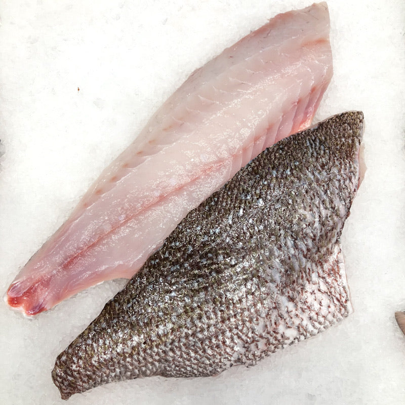 Snapper Fillets