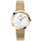 Accurist Yellow Gold Plated Crystal Set Ladies Watch 8127 - Hollins and Hollinshead