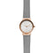 Skagen Freja Stainless Steel Ladies Watch SKW2716 - Hollins and Hollinshead