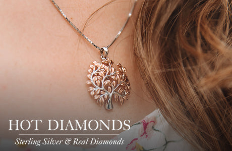 Hot Diamonds jewellery Home Page Watch Banner