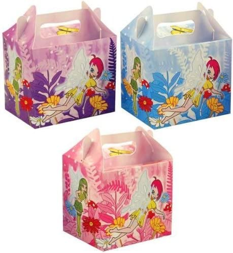 Fairy Themed Party Lunch Box