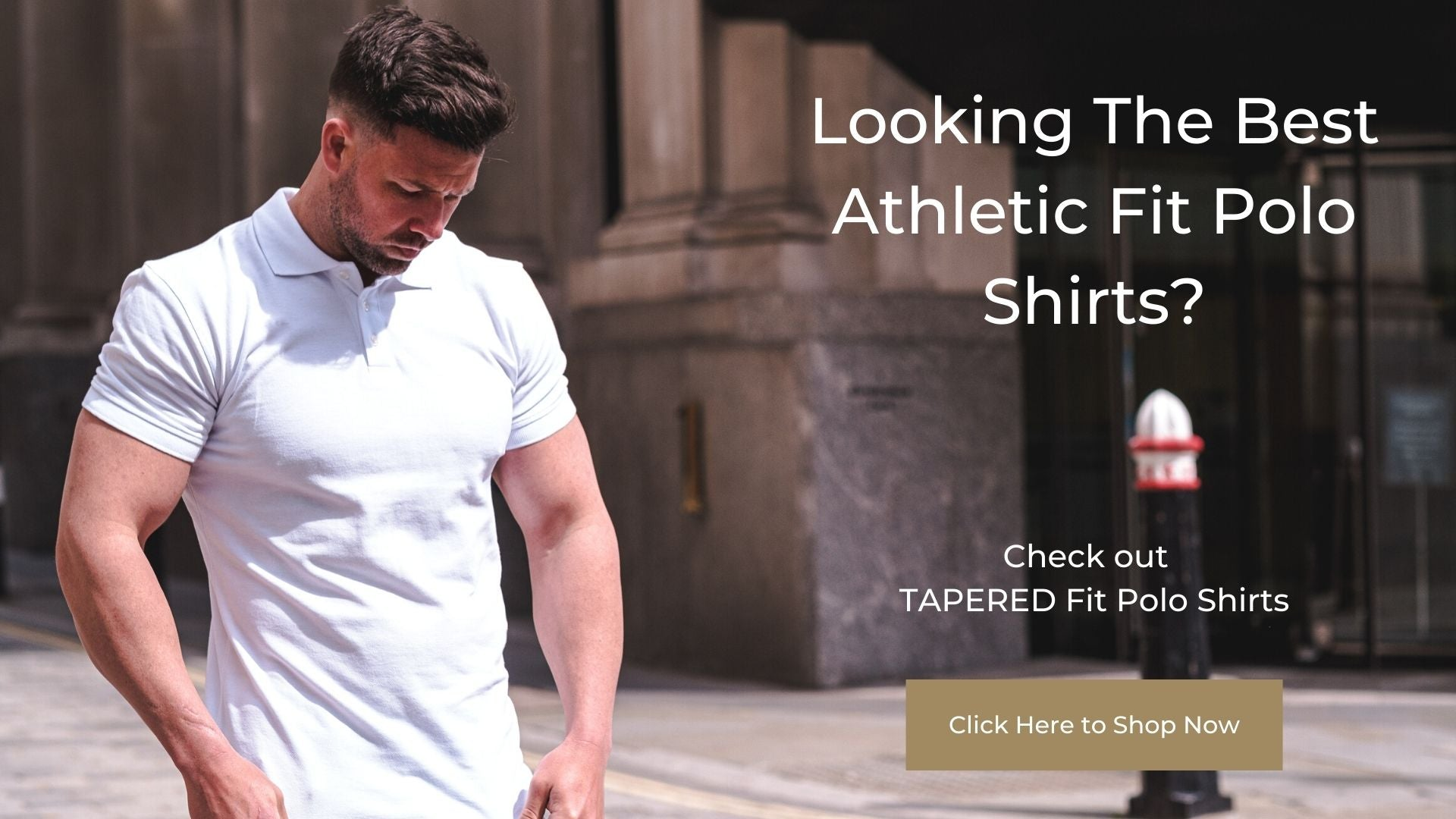 best athletic fit polo shirts for guys