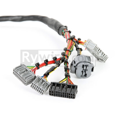 Rywire Honda B/D-Series Mil-Spec Engine Harness w/OBD2 Dist/Injectors/Alt & OBD1 92-95 ECU Plugs