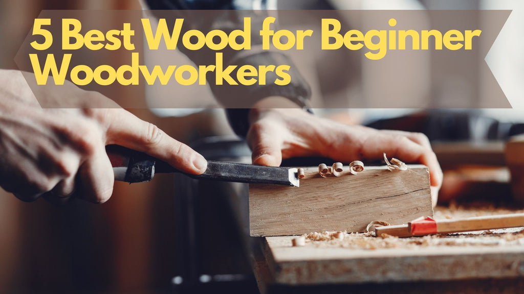 5 Best Wood for Beginner Woodworkers