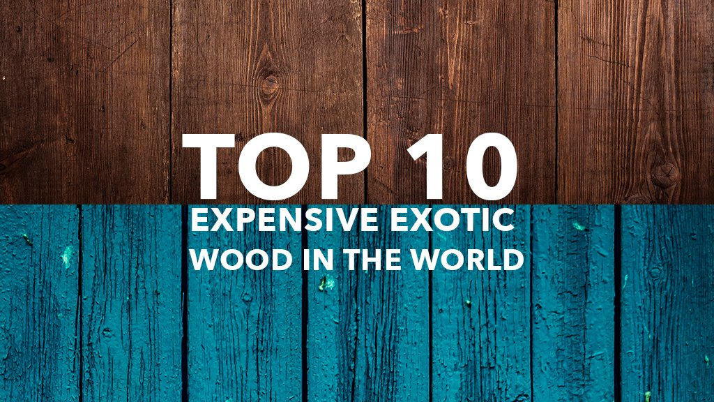 Top 10 Expensive Exotic Wood in the World