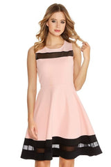 Pink And Black Mesh Skater Dress