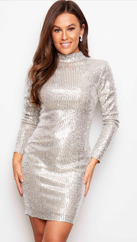 Silver Sequinned Long Sleeved, High Necked Midi Dress