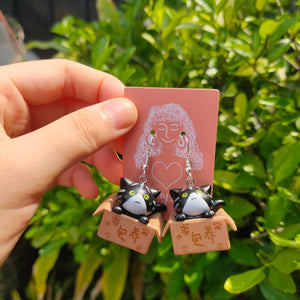 Cat in a Box Earrings