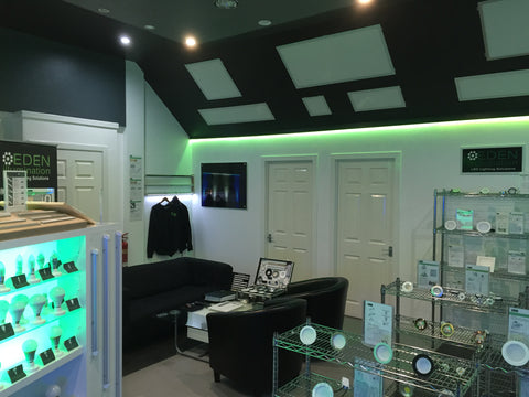 Eden illumination LED Lighting showroom
