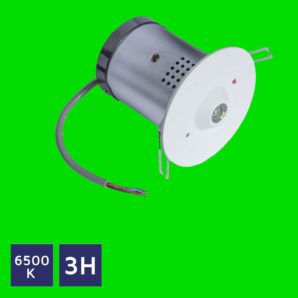 Emergency Down Light 44-10-64 - Eden illumination - Kitchen Lighting & Commercial Lighting