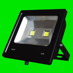 Flood Light - COB LED -TOR - 80W 15-04-37