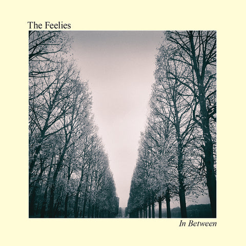 Feelies, The - In Between (Digital Download)
