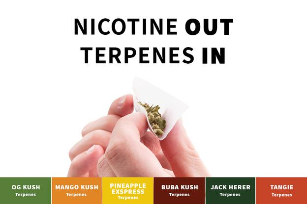 Nicotine out, Terpenes in