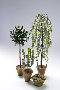 1/12th scale Garden Tree kits