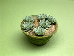 Echeveria Paper Plant Kit  for 1/12th scale Dollhouses, Florists and Miniature Gardens