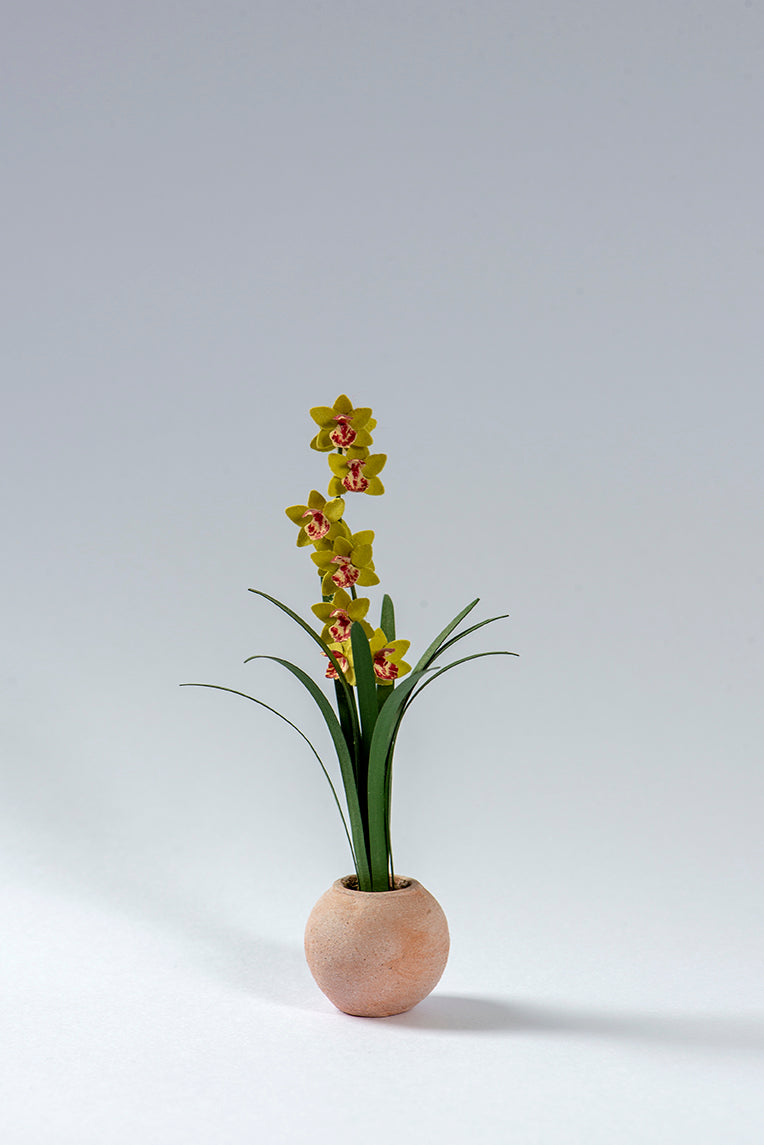 Cymbidium Orchid Paper Flower Kit  for 1/12th scale Dollhouses, Florists and Conservatories