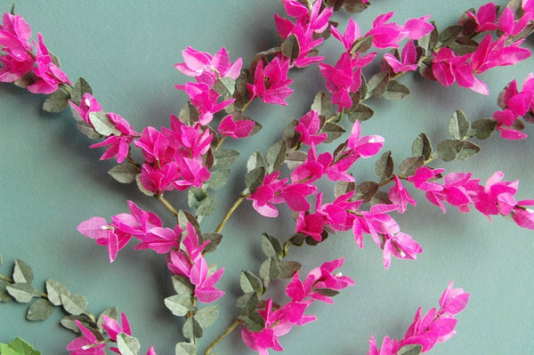 Bougainvillea Paper Flower kit for 1/12th Dollhouses, Florists and Miniature Gardens