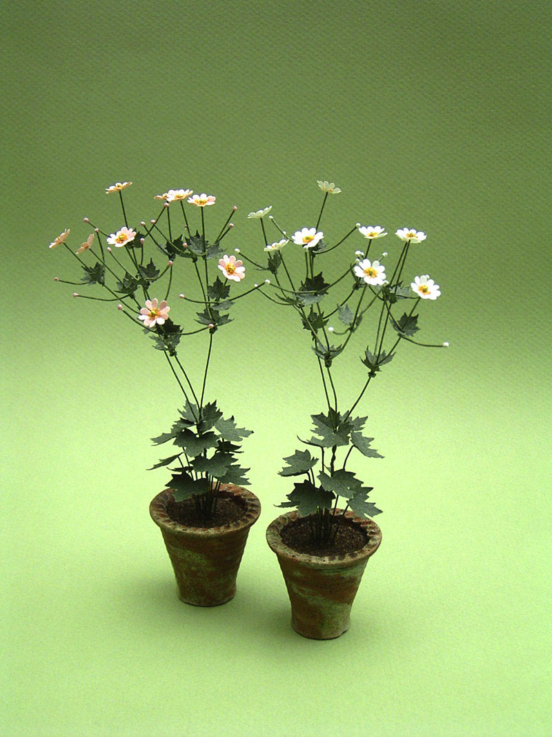 Japanese Anemone Paper Flower Kit  for 1/12th scale Dollhouses, Florists and Miniature Gardens