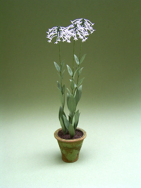 Nicotiana Sylvestris Kit  for 1/12th scale Dollhouses, Florists and Miniature Gardens
