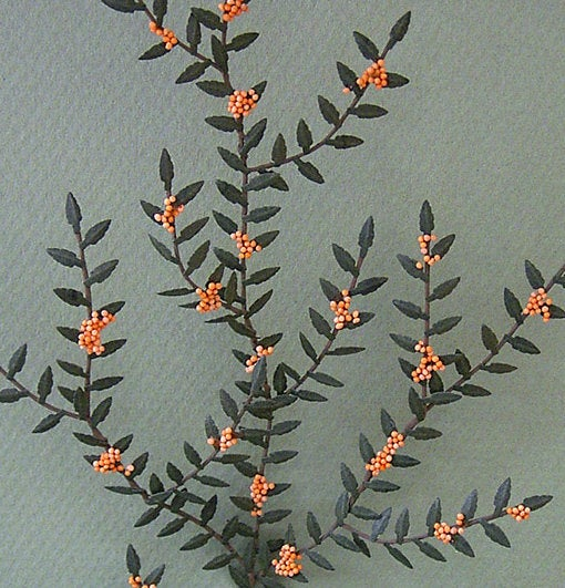 Pyracantha Paper Flower Kit  for 1/12th scale Dollhouses, Florists and Miniature Gardens