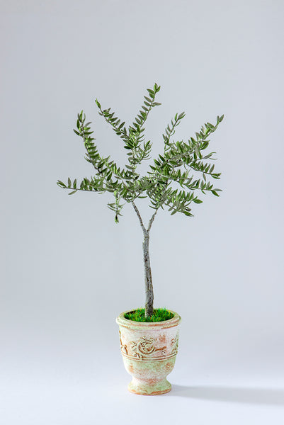 Olive Tree Paper Tree Kit  for 1/12th scale Dollhouses, Florists and Miniature Gardens