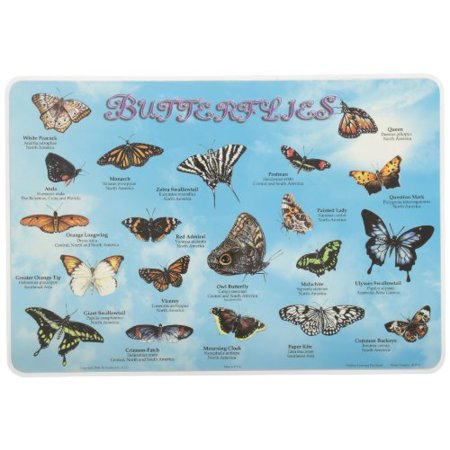 Learning Butterflies Placemat