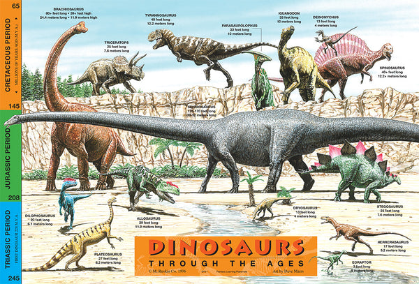 Learning Dinosaurs Placemat
