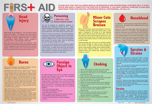 Learning First Aid Placemat