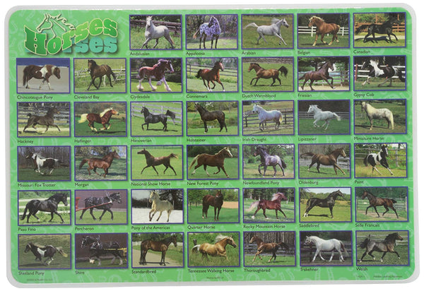Learning Horses Placemat