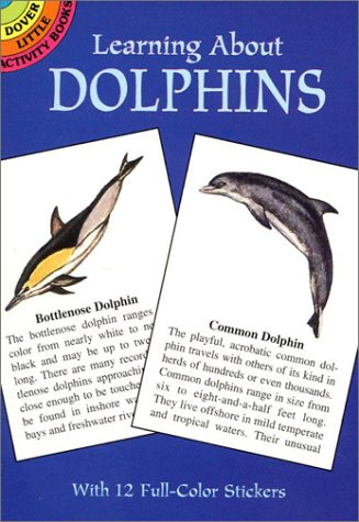Learning About Dolphins (Mini Dover)