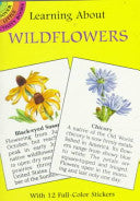 Learning About Wildflowers