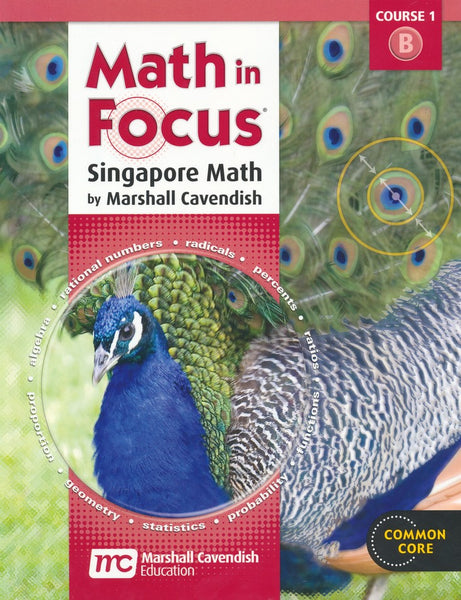 Math in Focus: Singapore Math Homeschool Package, 2nd semester Grade 6