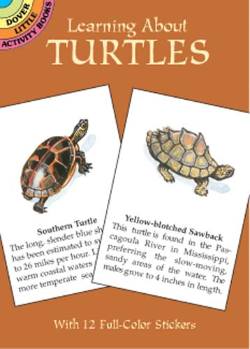 Learning About Turtles (Mini Dover)