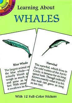 Learning About Whales (Mini Dover)