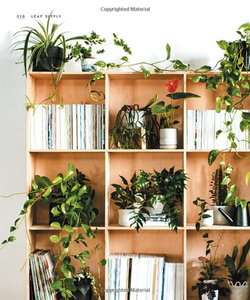 Leaf Supply: A Guide to Keeping Happy Houseplants
