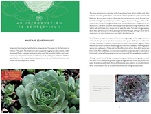 Load image into Gallery viewer, Sempervivum: A Gardener's Perspective of the Not-So-Humble Hens-and-Chicks
