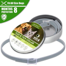 Load image into Gallery viewer, Dewel Anti Flea Ticks Insect Mosquitoes 8 Months Protection Waterproof Long Lasting Dog Collar Custom Puppy Cat Pet Collars