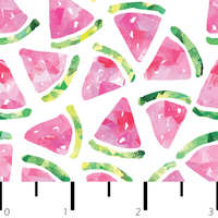 Watermelon Wonder Pattern - Color POP!