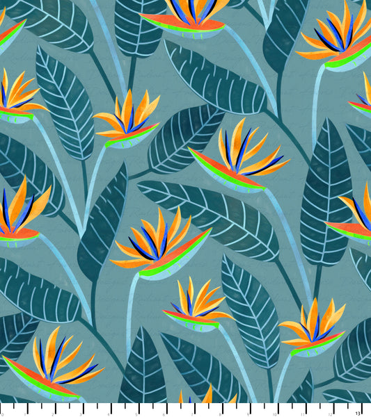 PREORDER Bird of Paradise Muted Blues - Birds of South Africa
