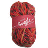 Squiggle Super Chunky Slipper Yarn - Joe's Toes Bizzie Lizzie - 2
