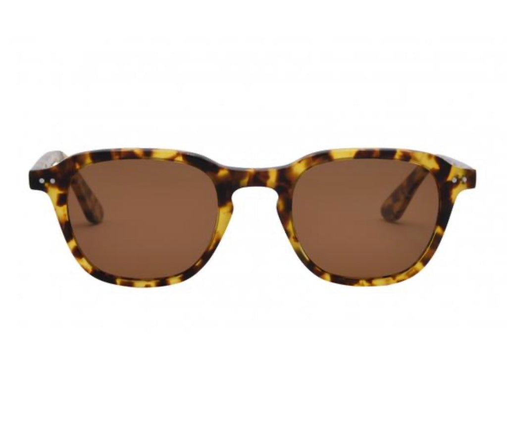 Sawyer Sunglasses