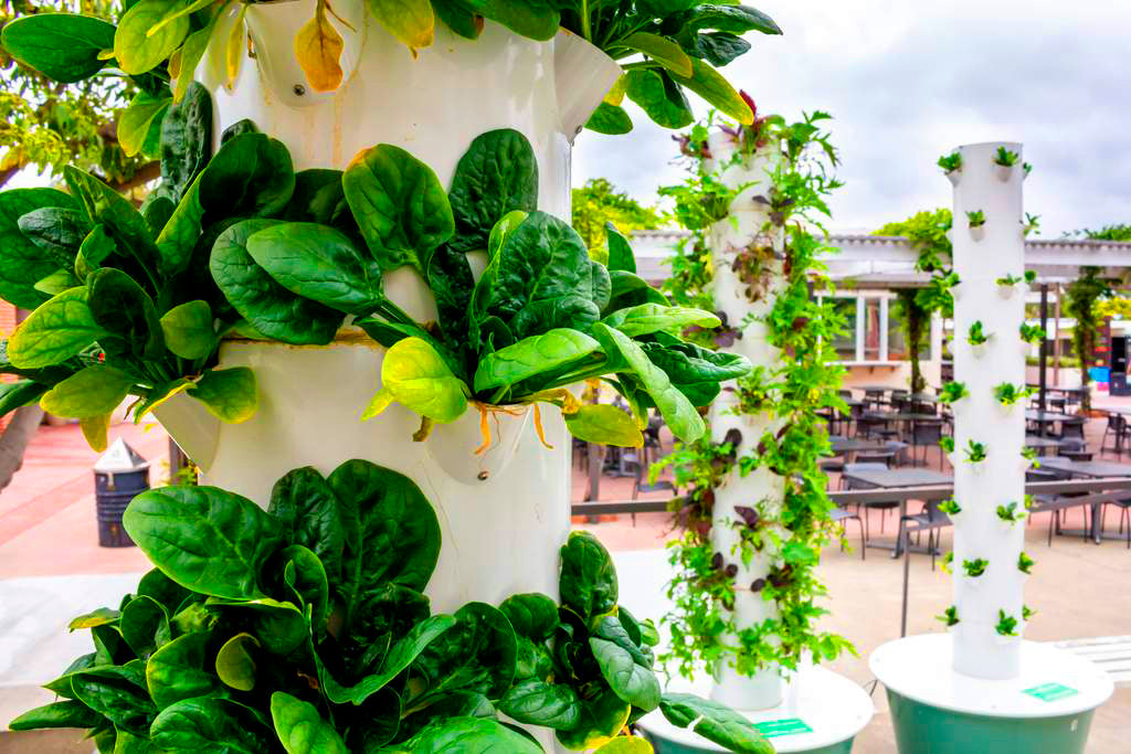 Hydroponic system roof