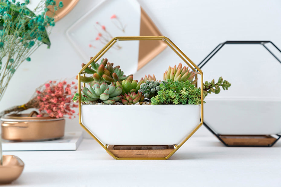 Metal Rack White Ceramic Planter | The Brand Decò