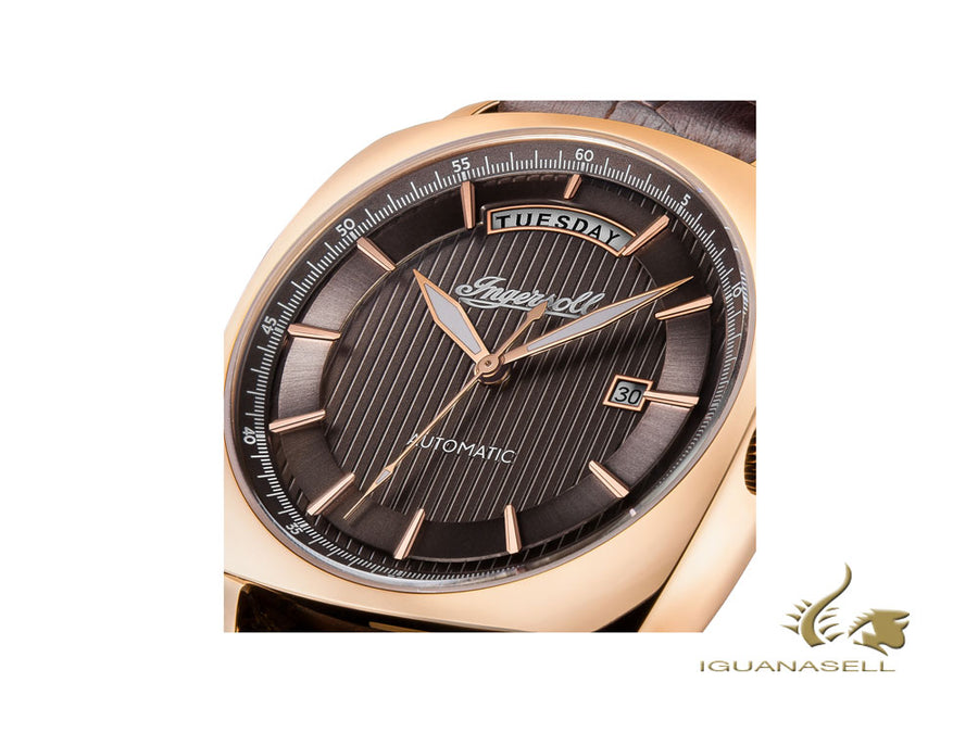 Montre Automatique Ingersoll Columbus, 42 mm, PVD Or Rose, Marron, I04203