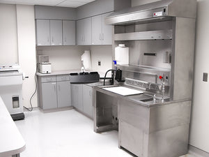 Pegboard Backsplash - Elevating Pathology Workstation with Backdraft Ventilation
