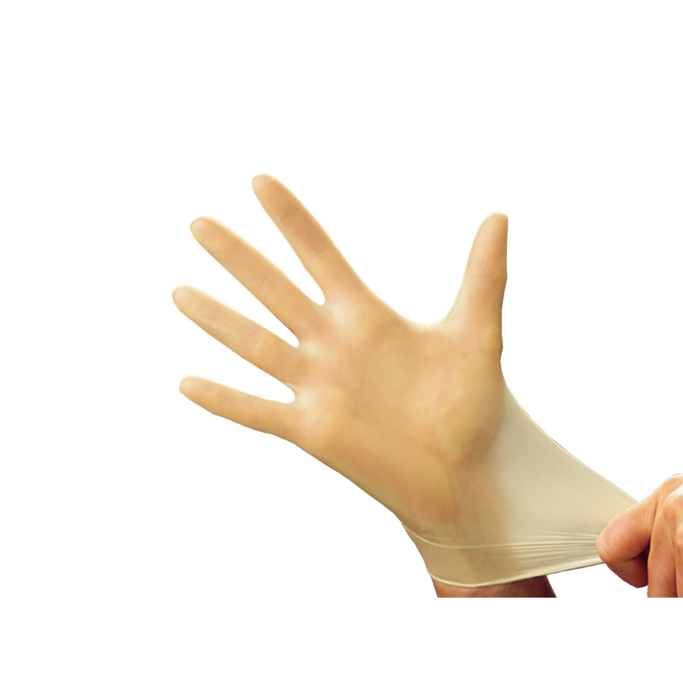 Latex Gloves-Laboratory Accessory-Mortech Manufacturing Company Inc. Quality Stainless Steel Autopsy, Morgue, Funeral Home, Necropsy, Veterinary / Anatomy, Dissection Equipment and Accessories