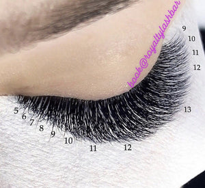 1 Day Advanced Volume™ Lash Extension Certification Training