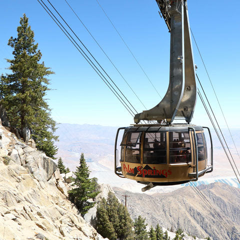 Let's Talk - The Palm Springs Aerial Tramway Yesterday, Today and Tomorrow