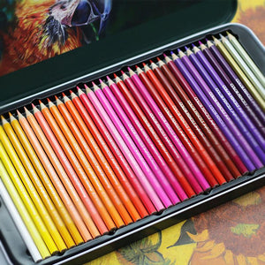🔥40% OFF🔥12/18/24/36 Color Metallic Color Pencils