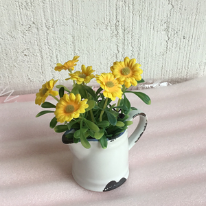 Flowers in rustic pitcher